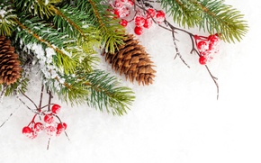 Picture winter, snow, snowflakes, tree, Christmas, bumps, winter, snow, decoration, Merry