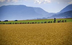Picture sport, cyclists, athletes, Platoon, The peloton, The tour de France, procycling, elite sport, the Tour …