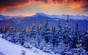 Wallpaper snow, mountains, nature, winter, trees, the sky, forest, sunset