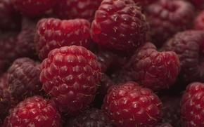 Wallpaper berries, macro, raspberry