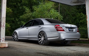 Picture Mercedes-Benz, Nature, Auto, Trees, Forest, Tuning, Machine