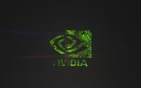 Wallpaper green, green, black, logo, nvidia gtx