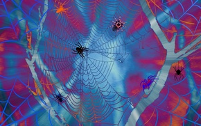 Picture line, collage, paint, web, spider