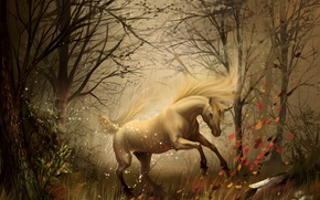 Picture autumn, forest, unicorn