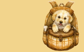 Picture art, puppy, backpack, bone, children's