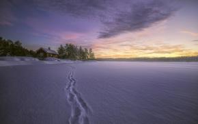 Picture winter, snow, traces, lake, house, Norway, Norway, RINGERIKE, Lake Øyangen, Ringerike