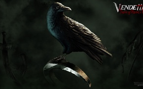 Picture weapons, Raven, flag, TopWare Interactive, Vendetta - Curse of Raven's Cry, Digital Deluxe Edition, Exclusive …