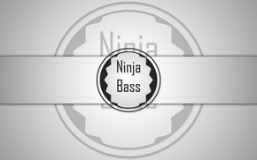 Picture white, black, Ninja, Bass