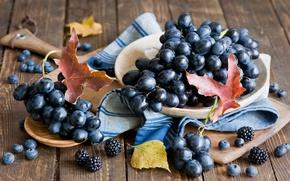 Picture autumn, leaves, red, berries, harvest, blueberries, grapes, still life, BlackBerry, Anna Verdina