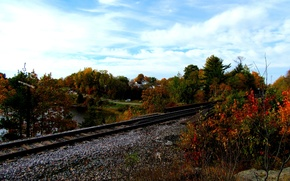 Picture autumn, forest, foliage, rails, colors, forest, falling leaves, Autumn, leaves, fall
