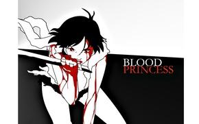 Picture blade, black hair, killer, fist, madness, bloody tears, princess, Saya Otonashi, Blood +, blood on …