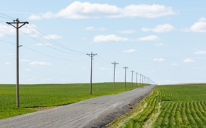 Picture road, field, power lines