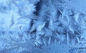 Wallpaper frozen, window, winter, frost, Frosty, window