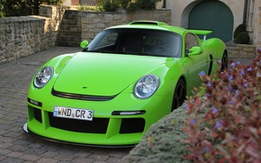 Picture flowers, green, house, green, tuning, Porsche, the stairs, house, Porsche, flowers, CTR 3, REPUTATION