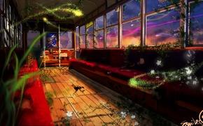 Picture lights, magic, Apocalypse, the car, desolation