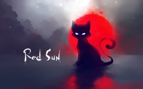 Wallpaper cat, the sun, red, deviantart, Apofiss