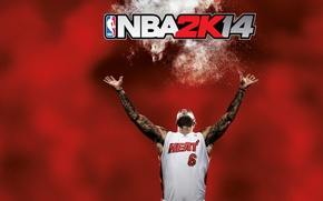 Picture the game, basketball, player, NBA2K14