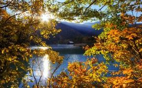Picture the sun, rays, trees, mountains, lake, Japan, Tochigi, Nikko