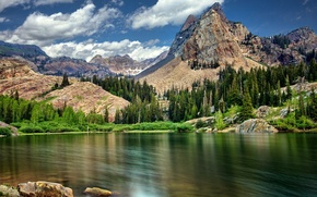Picture forest, mountains, nature, lake