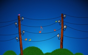 Wallpaper birds, notes, wire, 153