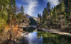 Picture forest, mountains, nature, river, national Park