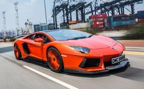 Picture road, movement, tuning, Lamborghini, front view, aventador, Molto Veloce, Aventador LP900-4
