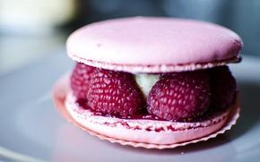 Picture berries, raspberry, dessert, cakes, sweet