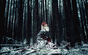 Picture forest, girl, snow