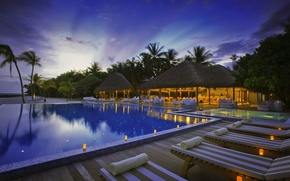 Picture palm trees, the ocean, pool, resort, exotic, resort