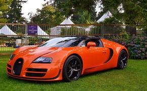 Picture veyron, bugatti, orange, vitesse