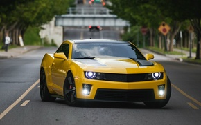 Picture car, machine, yellow, speed, car, Chevrolet, Camaro, fast, yellow, chevrolet camaro ss, american car, Chevrolet …