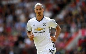 Picture star, star, forward, Manchester United, Manchester United, striker, striker, Zlatan Ibrahimovic, Zlatan Ibrahimovic, scorer
