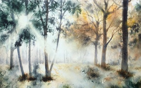 Picture nature, picture, watercolor