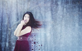 Picture girl, dress, winter, hair, snowing