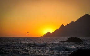 Wallpaper sea, wave, mountains, solar, Seagull, stones, sunset