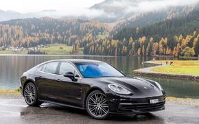 Picture Porsche, Panamera, Car, 2016, Metallic, (971), 4S