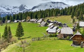 Picture forest, mountains, glade, houses, Slovenia, Pokljuka