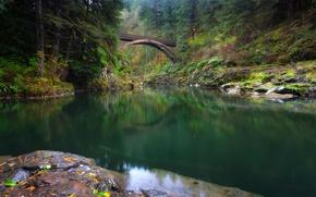 Picture forest, bridge, river, Washington, Washington, river Lewis, Lewis River, Yacolt, Moulton Falls Regional Park, Yacolt