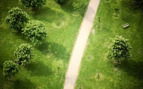 Picture trees, Park, 154, top, track