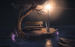 Picture light, bench, night, tree, art, lantern