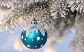 Picture snow, tree, new year, Christmas, branch, ball, decoration