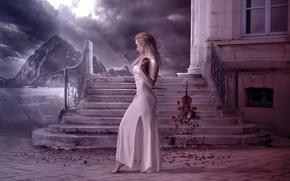 Picture girl, violin, the building, roses, ladder, leresti