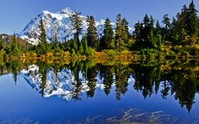 Picture the sky, snow, trees, mountains, lake, reflection