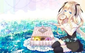 Picture box, donuts, blue eyes, vocaloid, sitting, art, napkin, Seeu, Akatsuki Rokinon