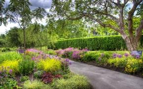 Picture greens, trees, flowers, garden, Canada, track, beds, Vancouver, VanDusen Botanical Garden