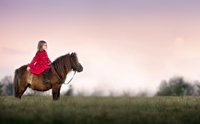 Picture girl, pony, Watchful