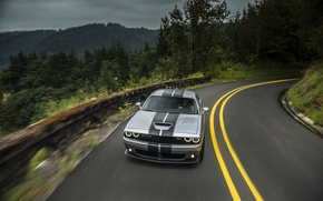 Picture Road, Mountains, Forest, Turn, Optics, Dodge, Challenger, 392, Road, Forest, 2015, Srt