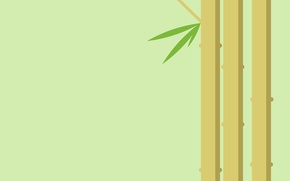 Picture leaves, plant, bamboo, stem