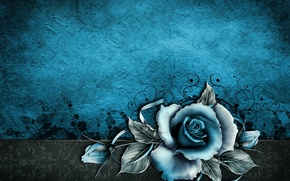 Picture flower, Wallpaper, patterns, rose, texture