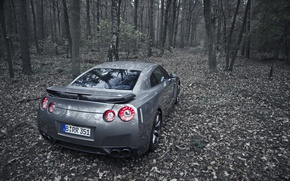 Picture autumn, trees, grey, foliage, Nissan GT-R